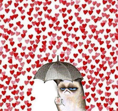 grump cat on valentines day