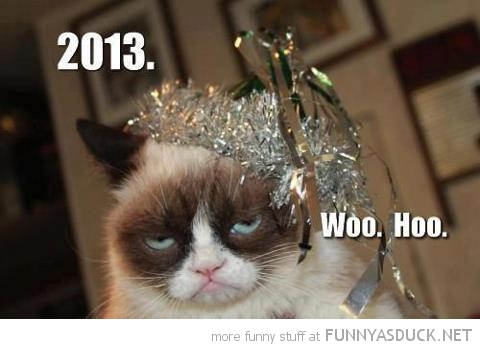 grumpy cat 2013