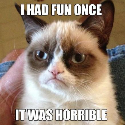 grumpy cat fun